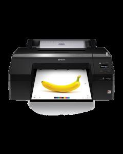 Imprimante Epson SureColor SC-P5000 Violet - 17