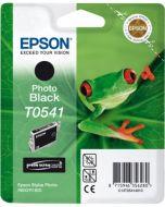 Encre Epson T0541 (Grenouille) Stylus Photo R800 et R1800  : noir photo