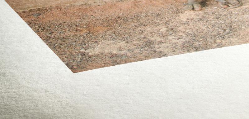 Texture du papier Hahnemuhle Bamboo