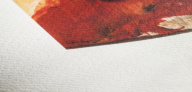 Texture du papier Hahnemuhle Albrecht Durer